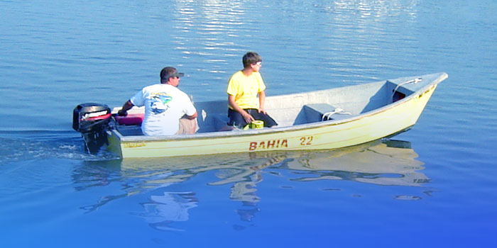 Bahia Marina in Ocean City Maryland - Sportfishing charters, boat